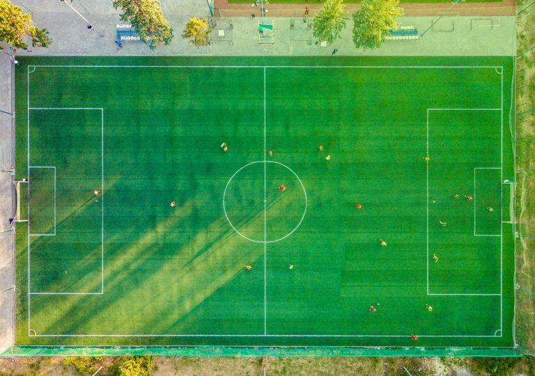 team roles field